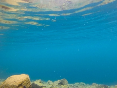 BLUE! Yes! No edits! GoPro underwater shot.
