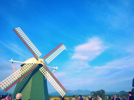 RoozenGaarde.  Most recognized by its big windmill.