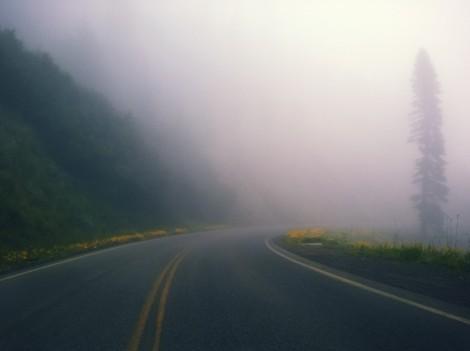 Fog(1)