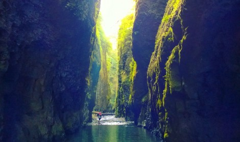 Oneonta Gorge OR