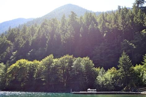 The dock at the lake.