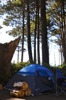 The one campsite that opened up =) Though later that morning, other spots also opened. Camper life!