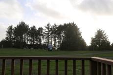 It was also campervan heaven!!! <3
