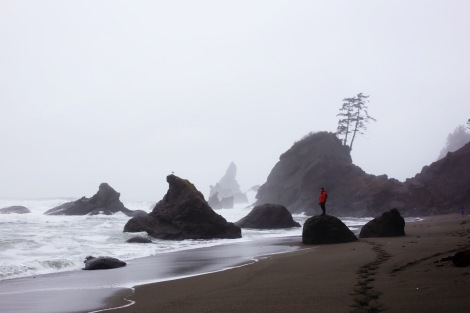 Shi Shi Beach, PNW, Of Wildest Heart Photog