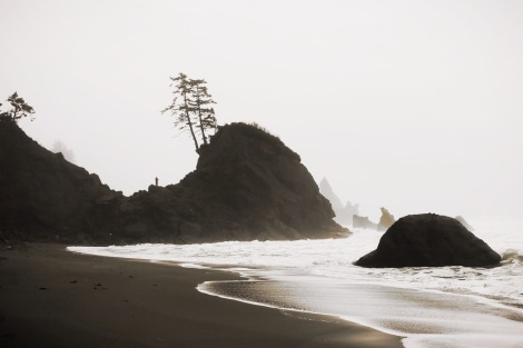 Shi Shi Beach, Of Wildest Heart Photog