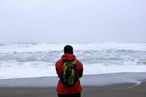 Shi Shi Beach, PNW, Washington Coast
