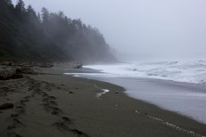 Shi Shi Beach, PNW, Washington Coast