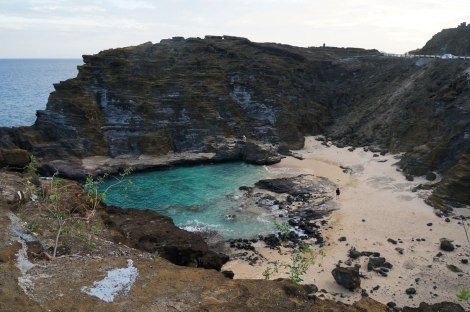 Cockroach Cove
