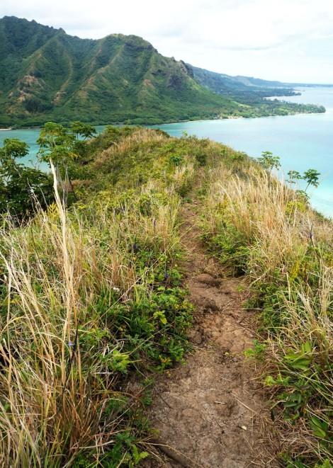 pu'u manamana, oahu hawaii hike