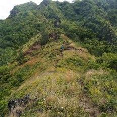 pu'u manamana, oahu, hawaii hike