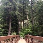 Umpqua Hot Springs, Oregon, road trip