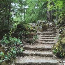From cute little stone stairs...