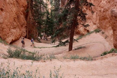 Bryce-Canyon-59