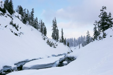 Artist Point, Mt. Baker, PNW, Snowshoeing
