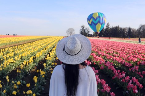 Wooden Shoe Tulip Festival, Oregon, PNW