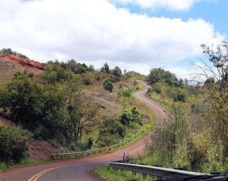 Waimea Canyon, Kokee State Park, Kauai, Hawaii