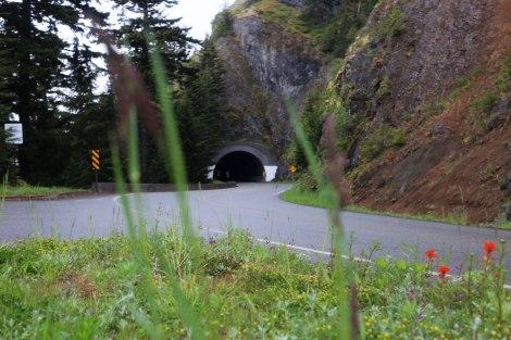 Hurricane Ridge, Olympic National Park, Washington State