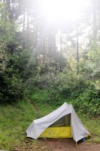 Brookings, Oregon, PNW