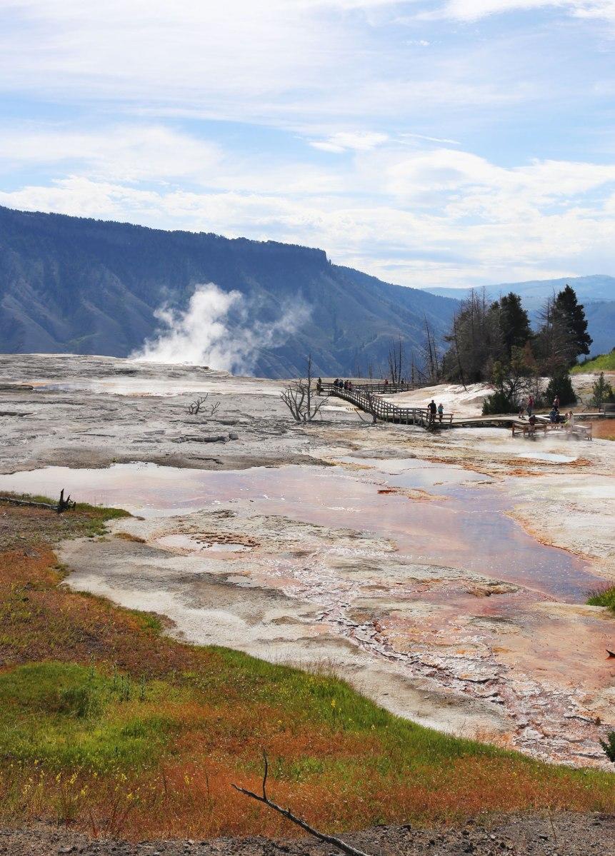 Yellowstone, Mammoth Hot Springs