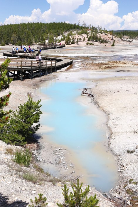 Norris Geyser Basin, Yellowstone