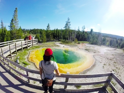 Upper Geyser Basin, morning glory pool, Yellowstone