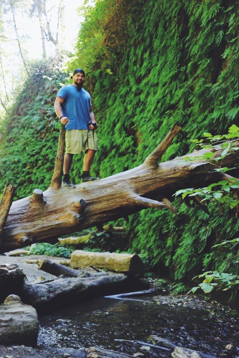 Redwoods National Park, coastal redwoods, #WildestCAroadtrip, USA summer road trip, Fern Canyon