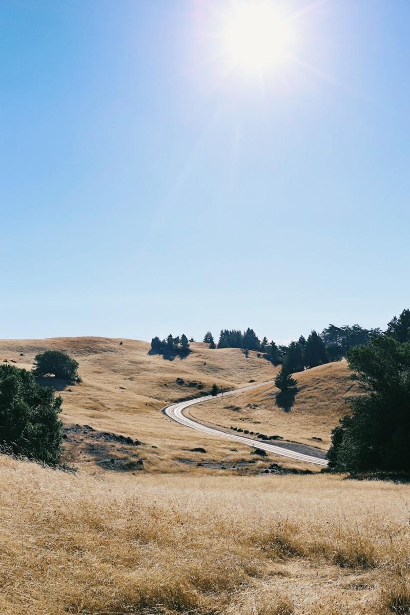 CA Coastal Highway Roadtrip, CA Road trip, PNW, #WildestCAroadtrip, Mount Tamalpais
