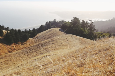 CA Coastal Highway Roadtrip, CA Road trip, PNW, #WildestCAroadtrip, Mount Tamalpais