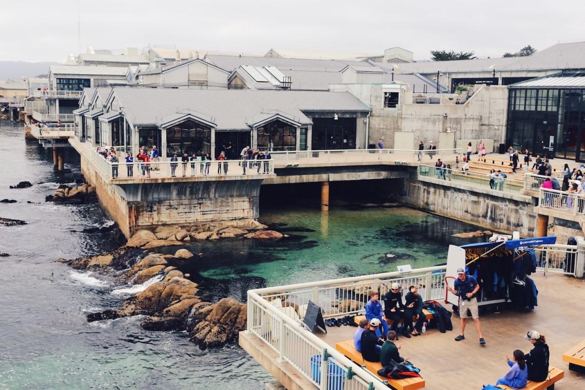 CA Coastal Highway Roadtrip, CA Road trip, PNW, #WildestCAroadtrip, Monterey Bay Aquarium
