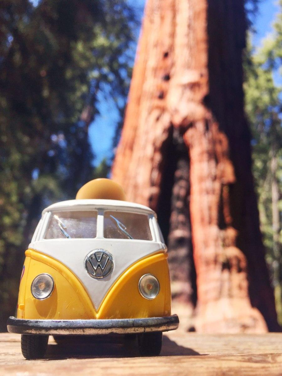 Sequoia National Park, CA Road trip, PNW, #OfWildestVan